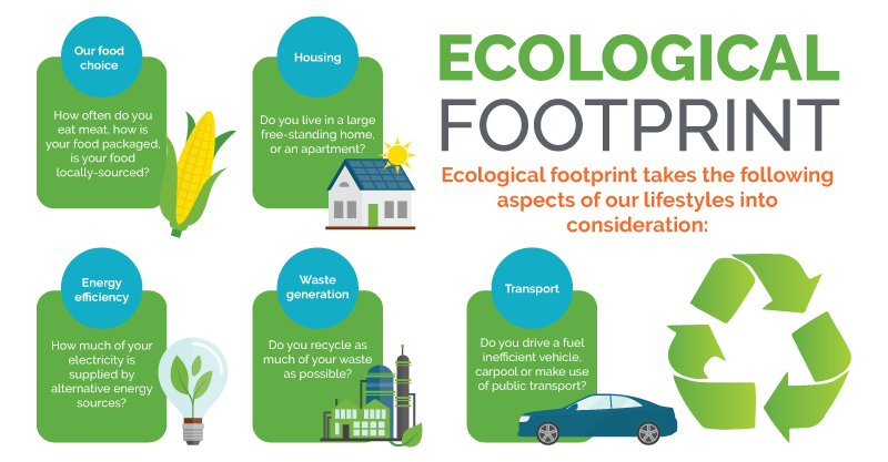Green Office_Ecological_footprint_Infographic