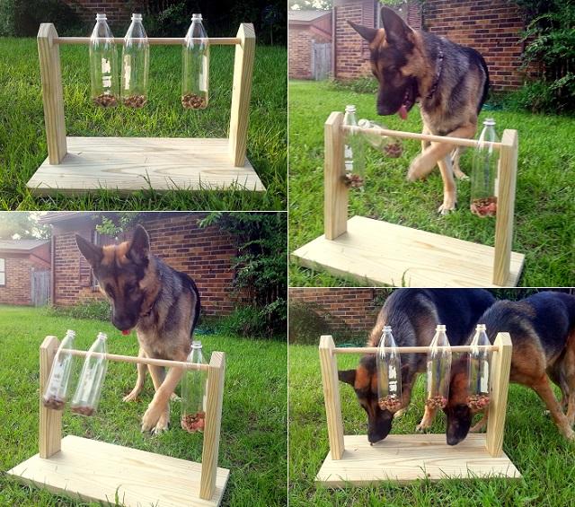 Spinning-Plastic-Bottle-Dog-Treat-Game