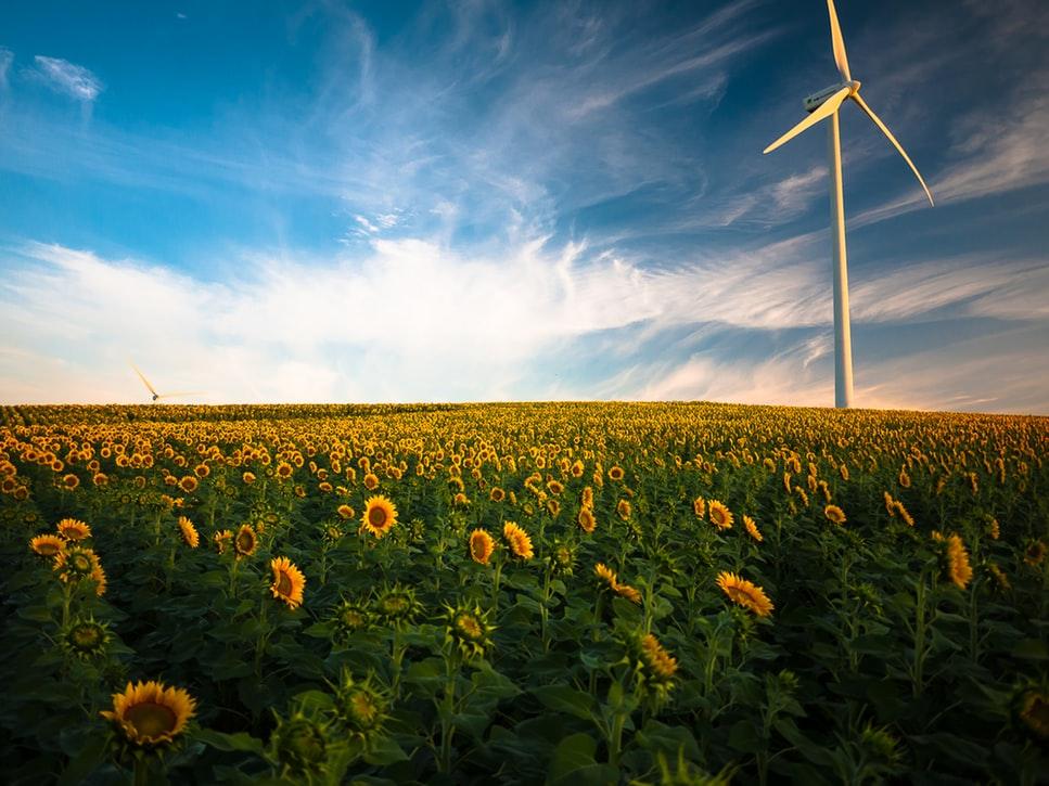 zero carbon energy